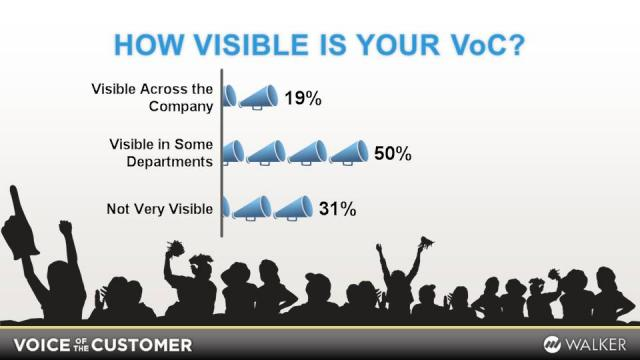 How Visible Is Your VoC?
